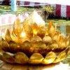 Madurai Meenakshi Amman Temple and lotus tank video